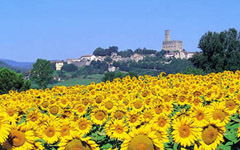 Calamidoro Hotel - Weekend in Tuscany