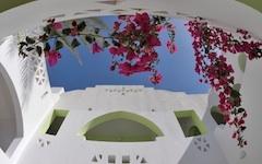 Domina Oasis Resort